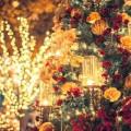クリスマス 告白 女性