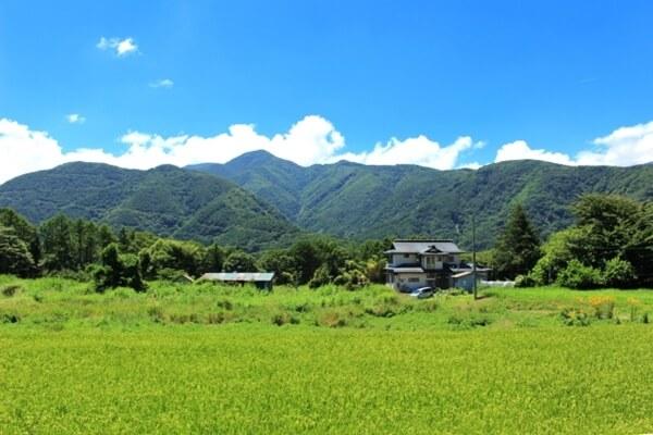 テラスハウス 軽井沢 31話 ネタバレ